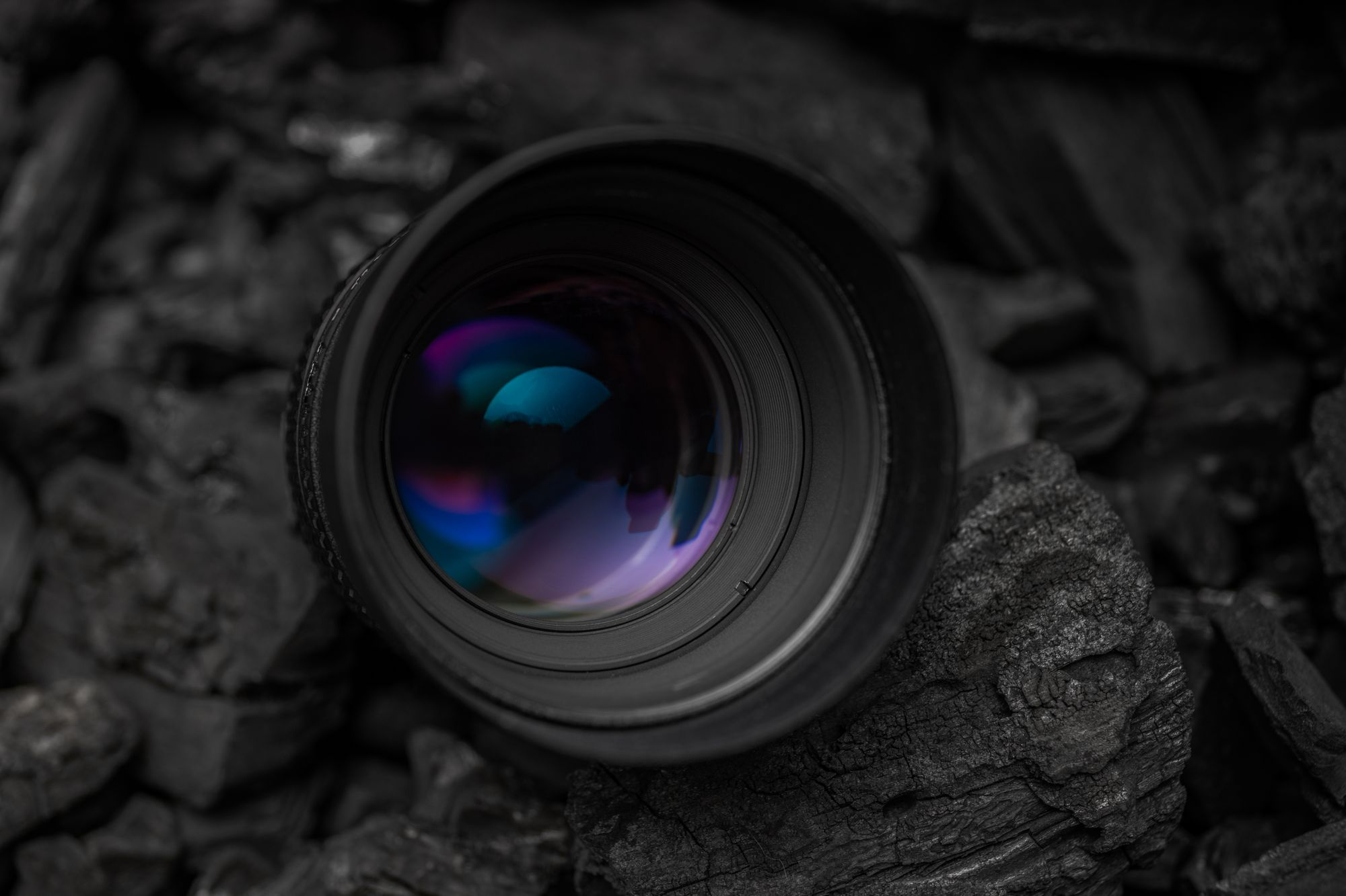 The Nikkor 105mm F/2 DC: The Best Lens I've Ever Used